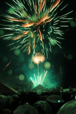 南砺利賀そば祭り (43)