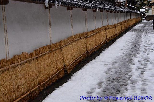 2月16日 (火) 金沢市内 (1)