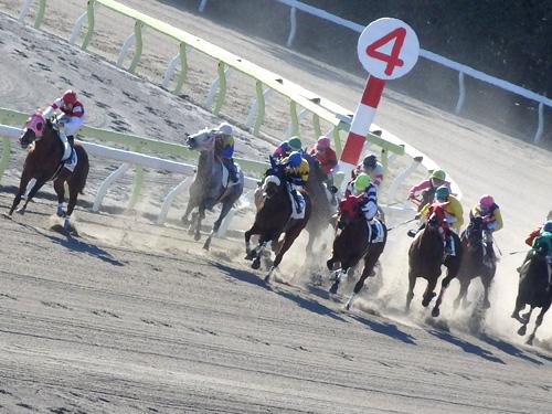 24レース1