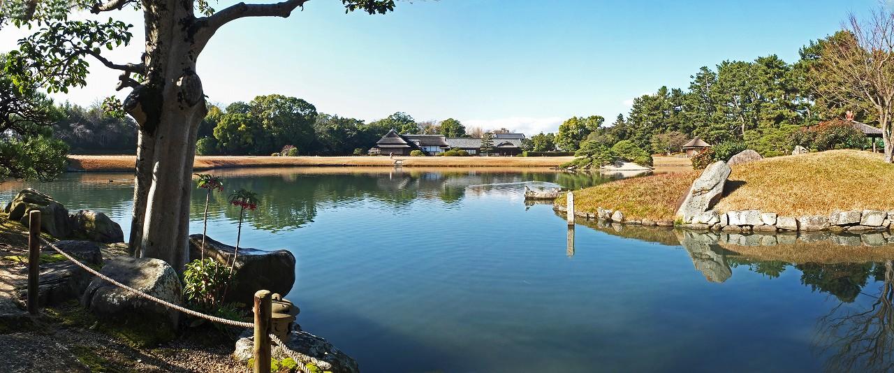 s-20151222 後楽園冬至の日の園内中島茶屋眺めた沢の池ワイド風景 (1)