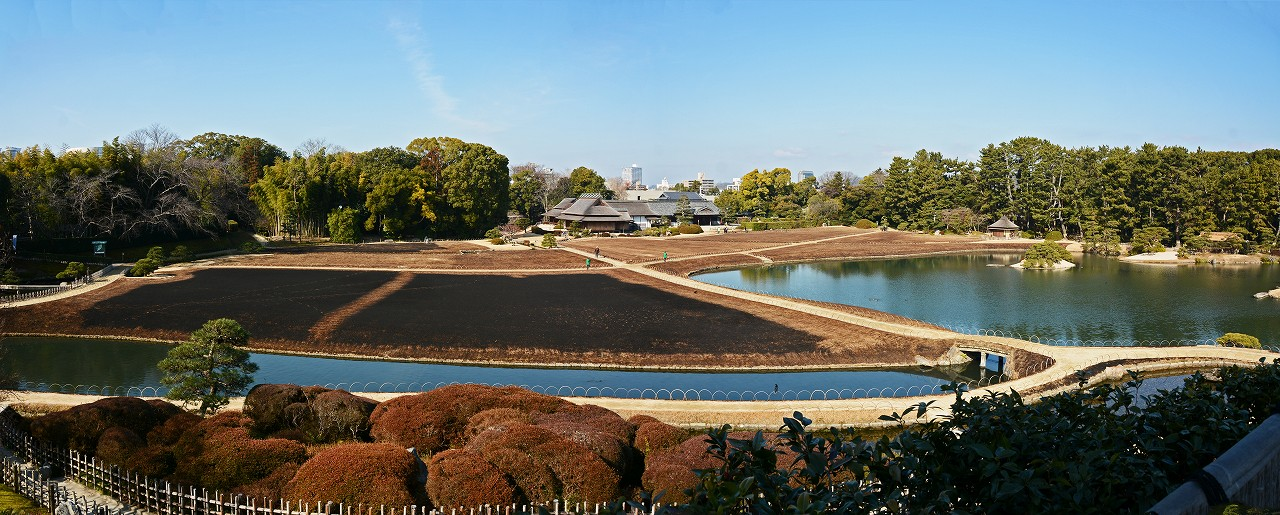 s-20160204 後楽園芝焼翌日の今日の園内ワイド風景 (1)