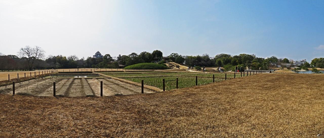 s-20160226 後楽園今日の茶畑側から井田越しに眺めた園内ワイド風景 (1)