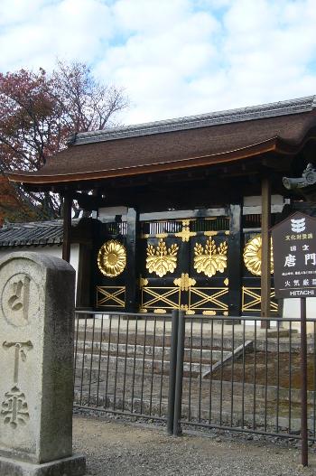 醍醐寺 桐の紋章