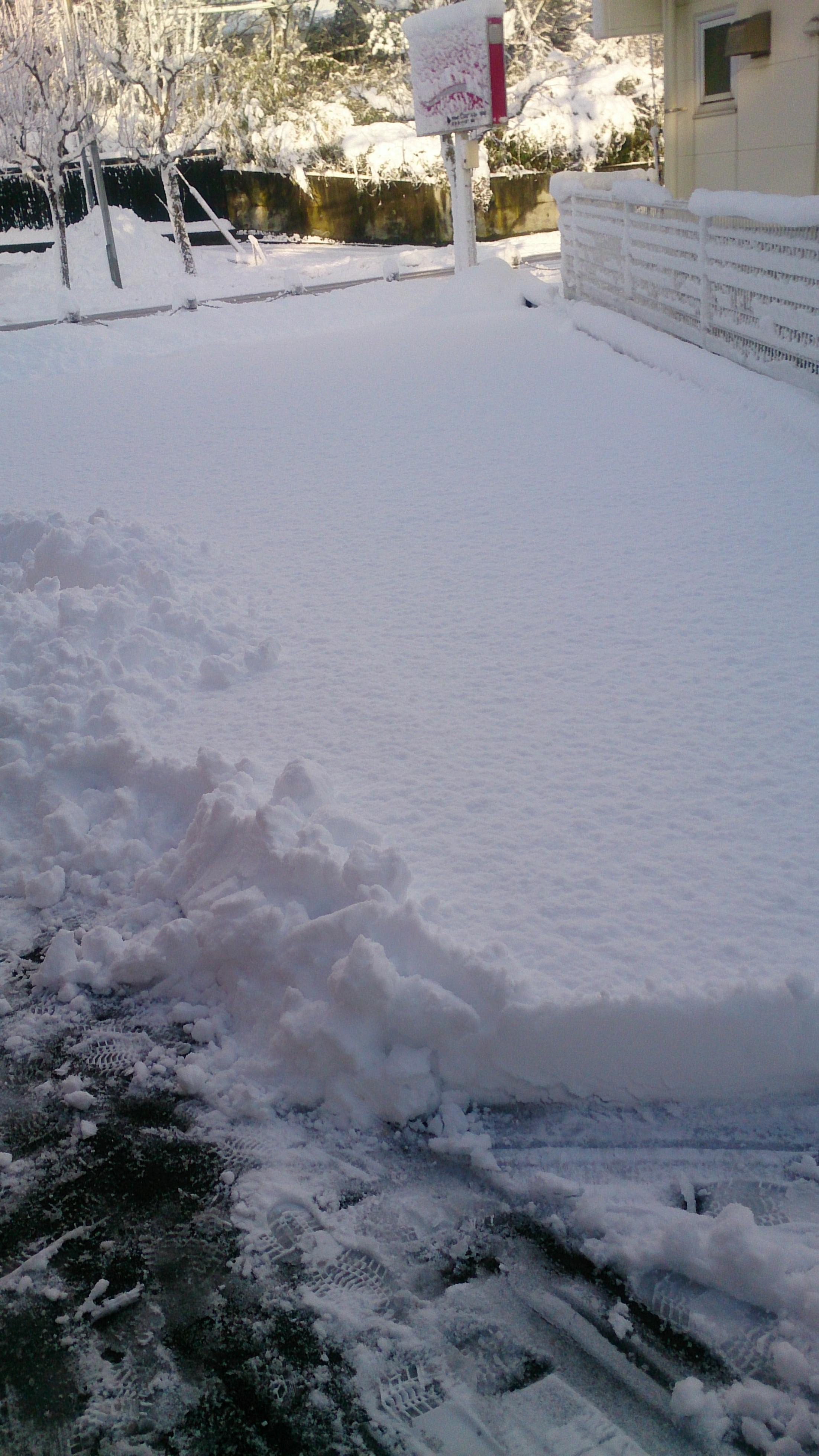 積雪20㎝?.