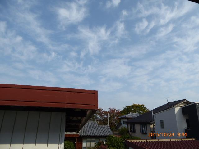 2015_10240011.jpg