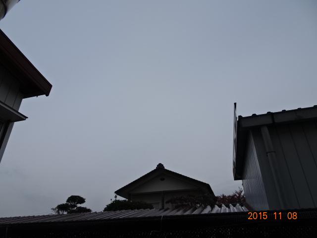 2015_11080005.jpg