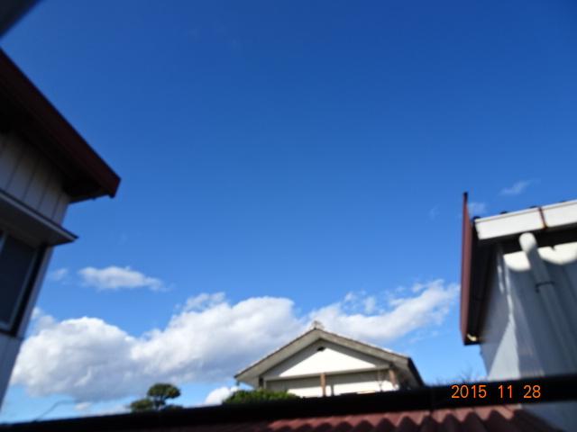 2015_11280061.jpg