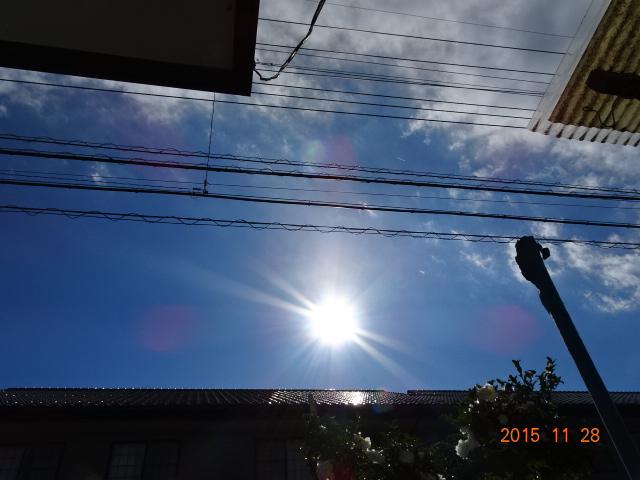 2015_11280062.jpg