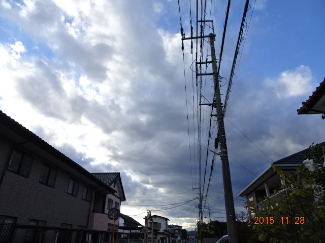 2015_11280084.jpg