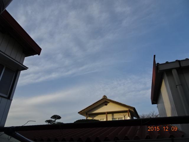 2015_12090020.jpg