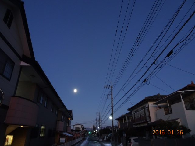 2016_01260004.jpg