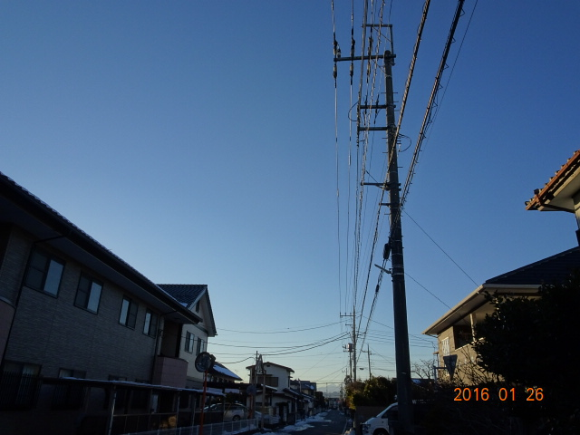 2016_01260057.jpg