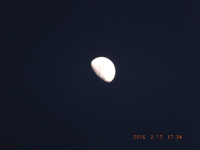 2016_02170104.jpg