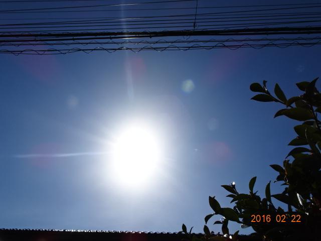 2016_02220018.jpg