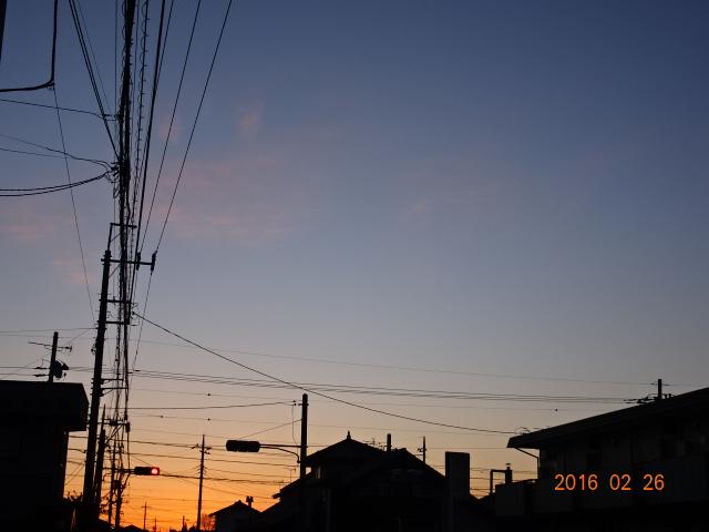 2016_02260008.jpg