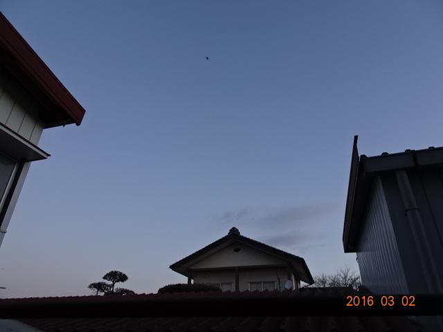 2016_03020001.jpg