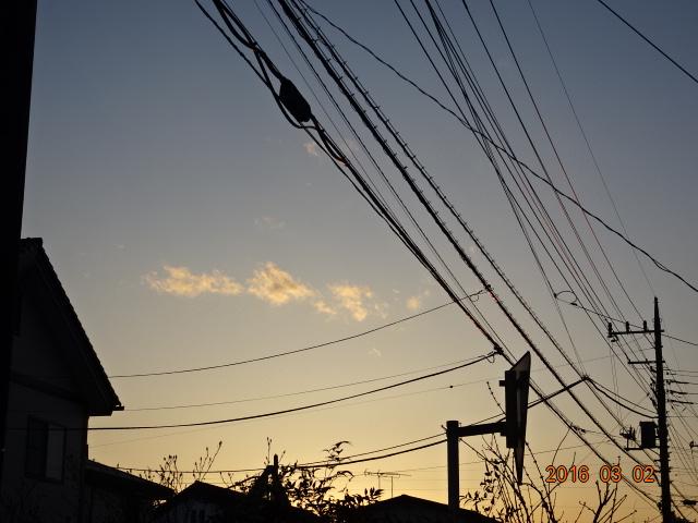 2016_03020045.jpg