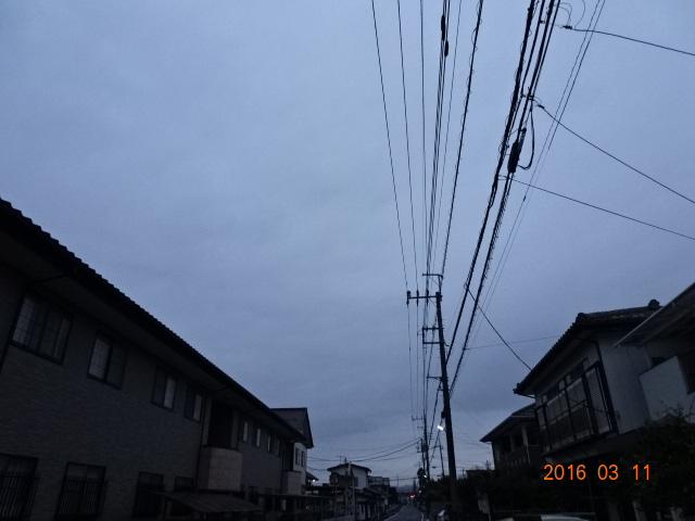 2016_03110004.jpg