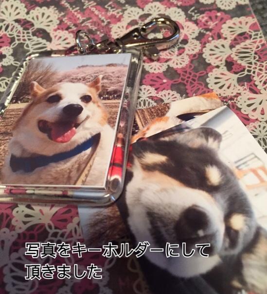 fc2blog_201602261356047bb.jpg