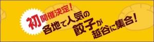 ぴあ餃子博覧会2015 in 越谷