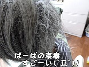 ブログ用006-2016 02 13-132812