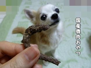 ブログ用017-2016 01 29-125322