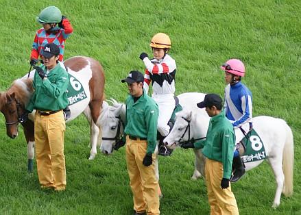 【競馬】よく高齢でもレース数使ってないから馬が若いって言うけどおかしくね?