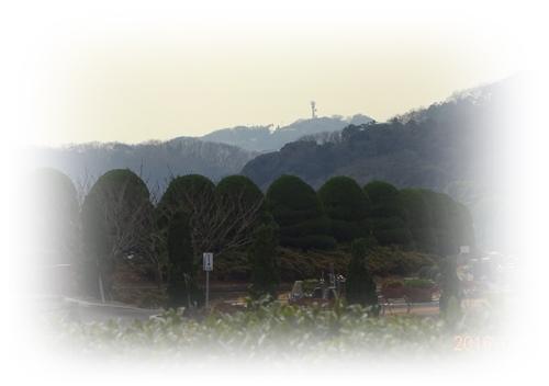 DSC04224霊園