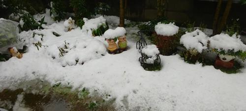 DSC04364雪の庭