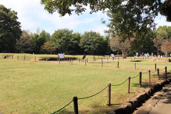 IMG_3384草の種公園散歩