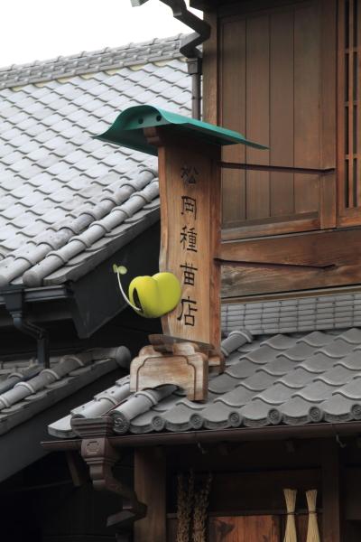 IMG_3444川越川越
