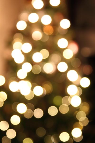 IMG_9973クリスマスツリークリスマスツリー