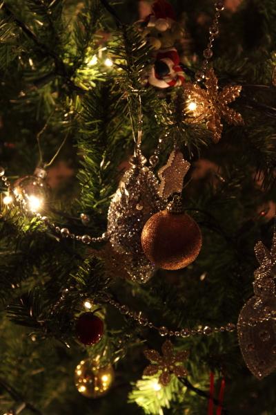 IMG_9996クリスマスツリークリスマスツリー