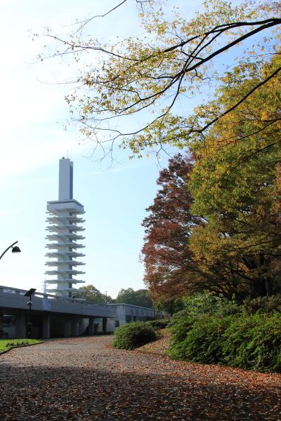 IMG_6720駒沢公園駒沢公園