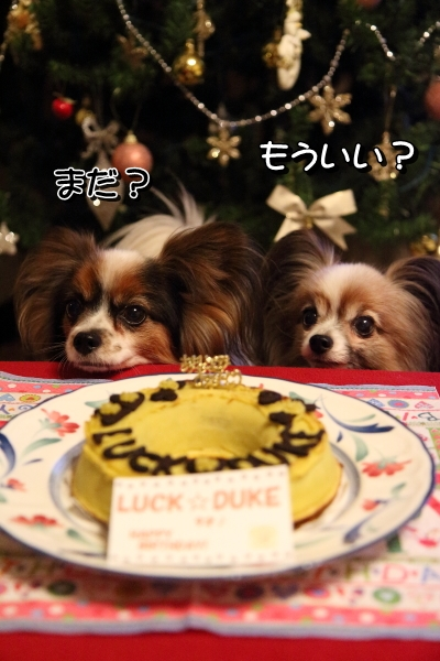 IMG_6874お誕生ケーキケーキ