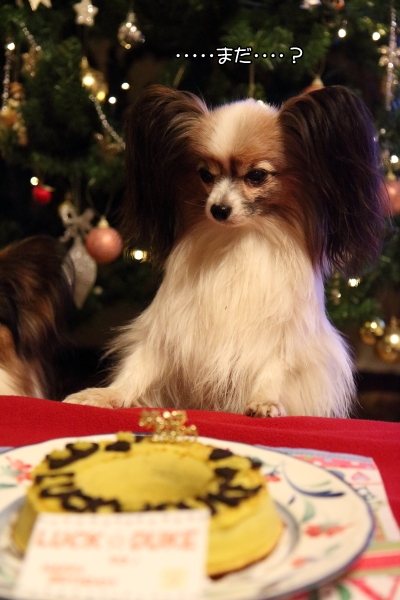 IMG_6878お誕生ケーキケーキ