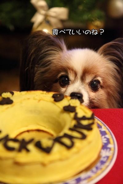 IMG_6879お誕生ケーキケーキ