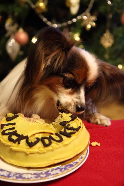 IMG_6899お誕生ケーキケーキ
