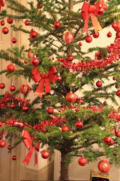 IMG_1133西洋館のクリスマス2015西洋館のクリスマス2015