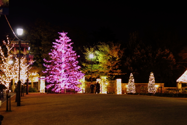 IMG_1188西洋館のクリスマス2015西洋館のクリスマス2015