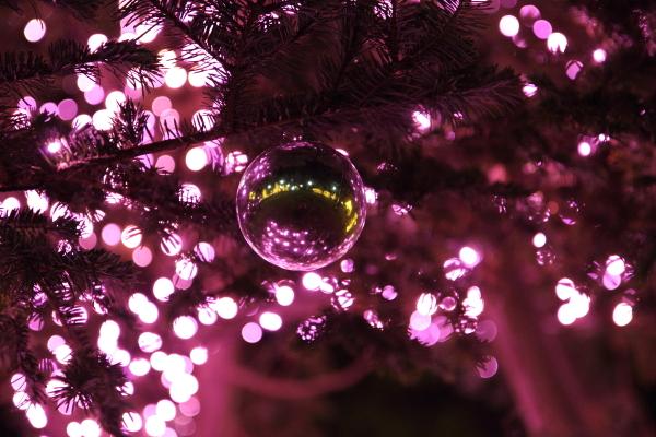 IMG_1200西洋館のクリスマス2015西洋館のクリスマス2015
