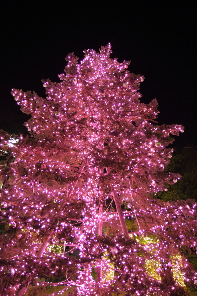 IMG_1208西洋館のクリスマス2015西洋館のクリスマス2015