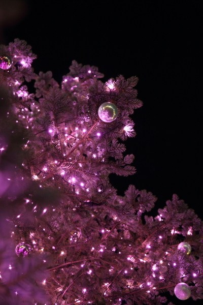 IMG_1205西洋館のクリスマス2015西洋館のクリスマス2015