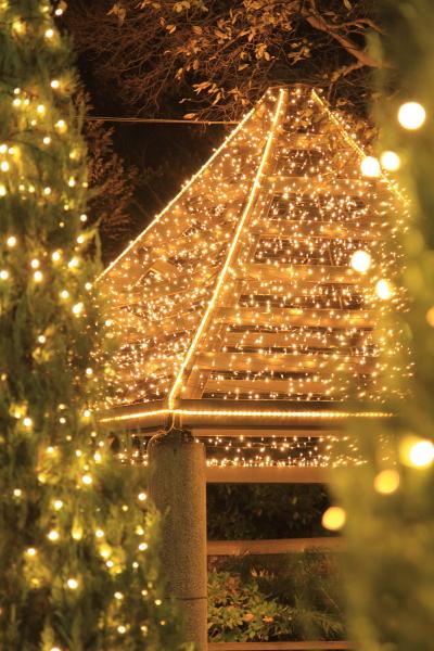 IMG_1191西洋館のクリスマス2015西洋館のクリスマス2015