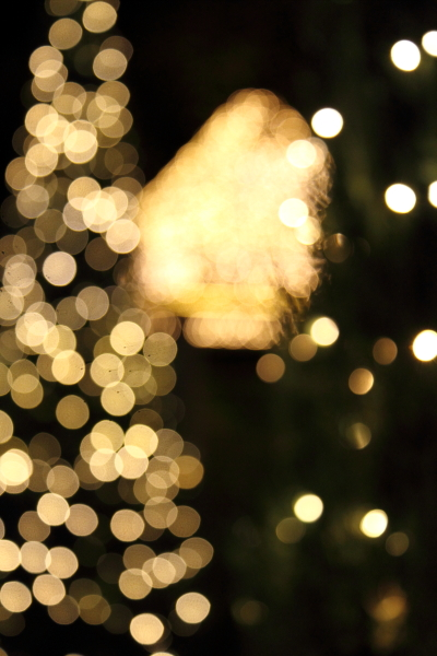 IMG_1195西洋館のクリスマス2015西洋館のクリスマス2015