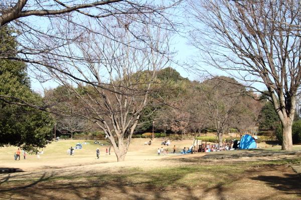 IMG_1468新春ふるさと公園