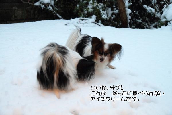 IMG_2659初雪2016初雪2016