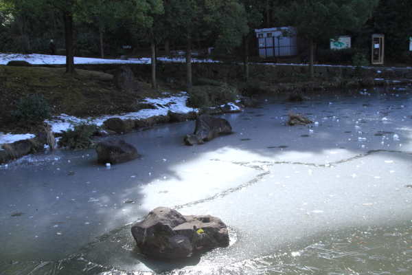 IMG_2678雪のふるさと公園雪のふるさと公園