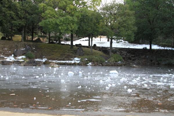 IMG_2740雪のふるさと公園雪のふるさと公園