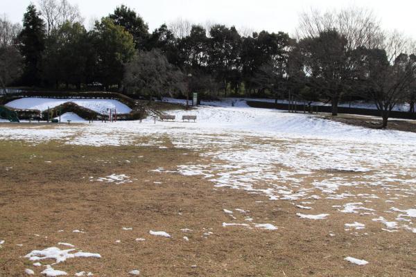 IMG_2681雪のふるさと公園雪のふるさと公園
